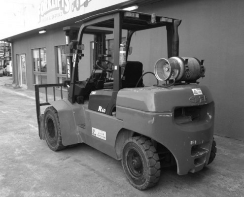 EP 4 tonne forklift dual wheels lpg rear view
